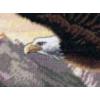Eagle Cross Stitch Kits