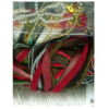 Holiday Accessory Packs