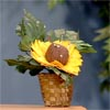 Image of Sunflower Pincushion Project Video
