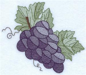 Fall Grapes Toile